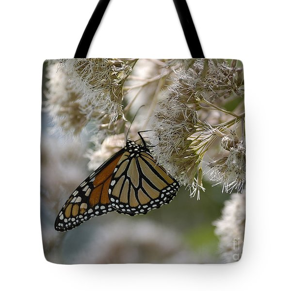 Monarch Pink Tote Bag
