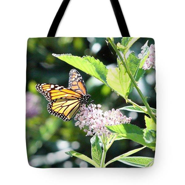 Monarch1 Tote Bag