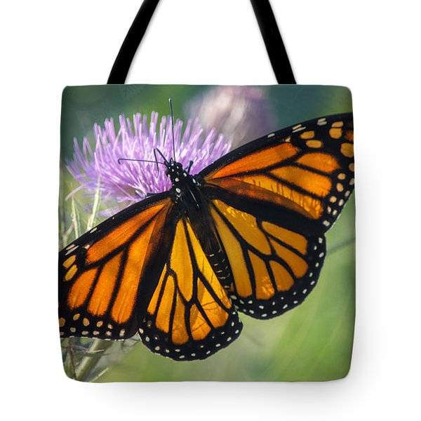 Monarch's Beauty Tote Bag by Rima Biswas
