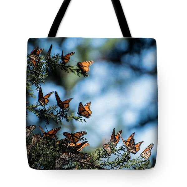 Monarchs In The Tree Tote Bag