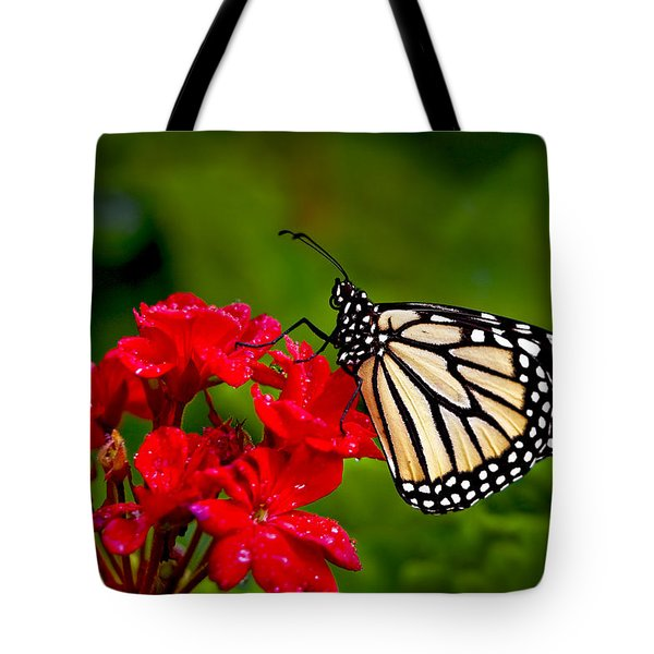 Monarh Butterfly Tote Bag