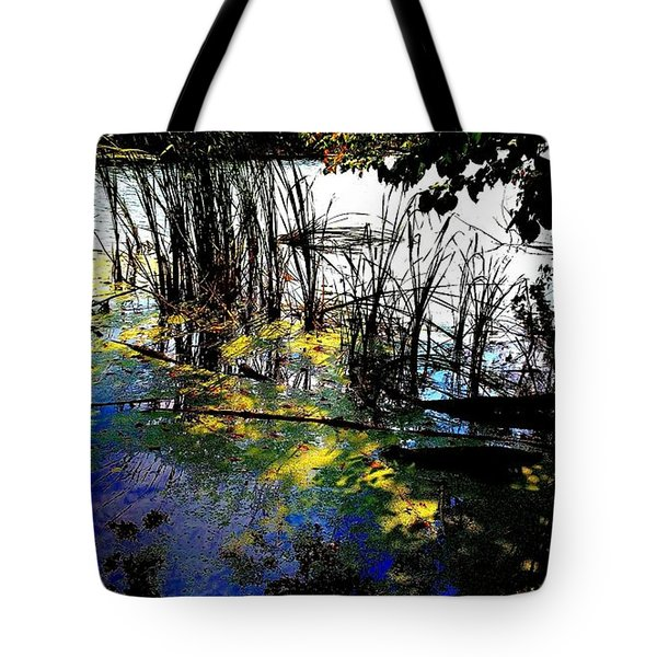 Monet Ice Age Pond Tote Bag