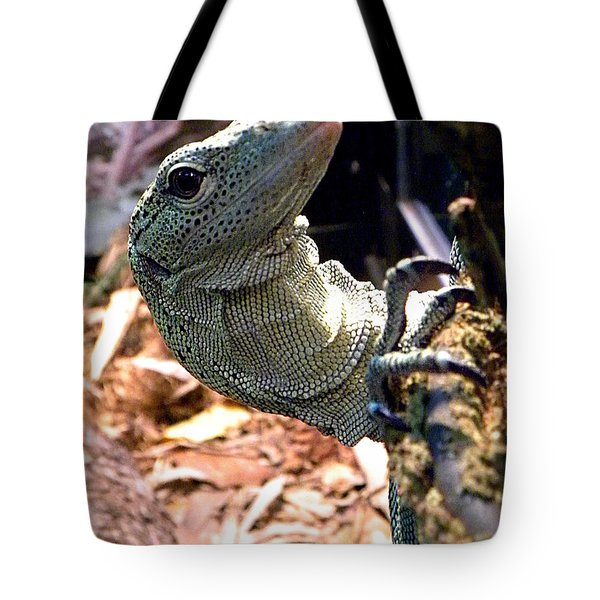 Monitor Lizard 002 Tote Bag by Chris Mercer