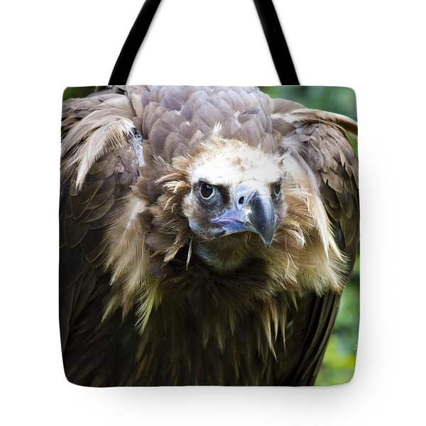Monk Vulture 3 Tote Bag