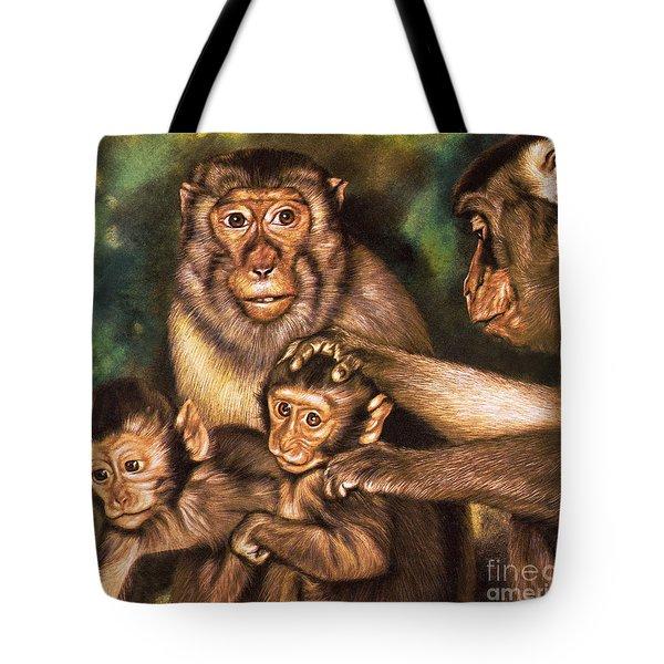 Monkey Family Tote Bag
