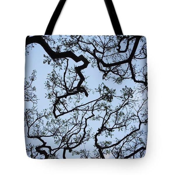 Monkey Pod Tree Patterns Tote Bag