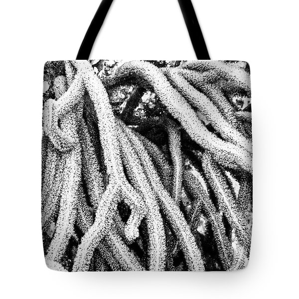Tote Bag featuring the photograph Monochromatic Corals 1 by Perla Copernik