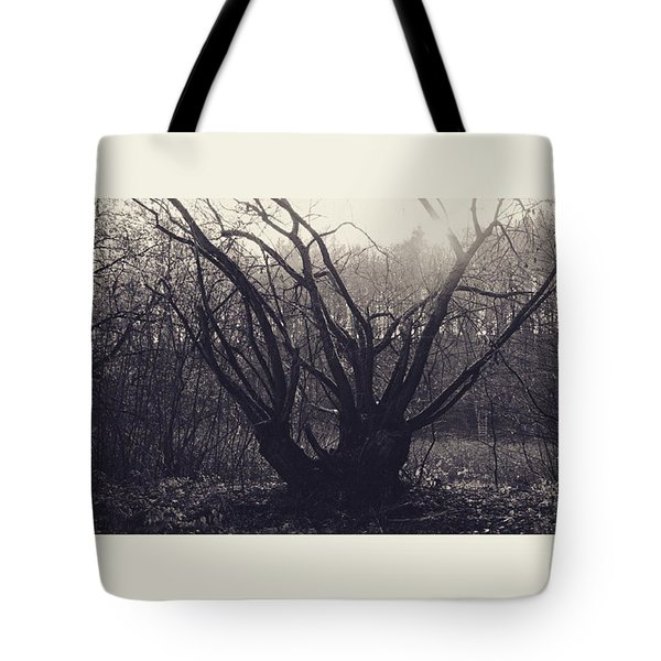 #monochrome #canon #tree #blackandwhite Tote Bag by Mandy Tabatt