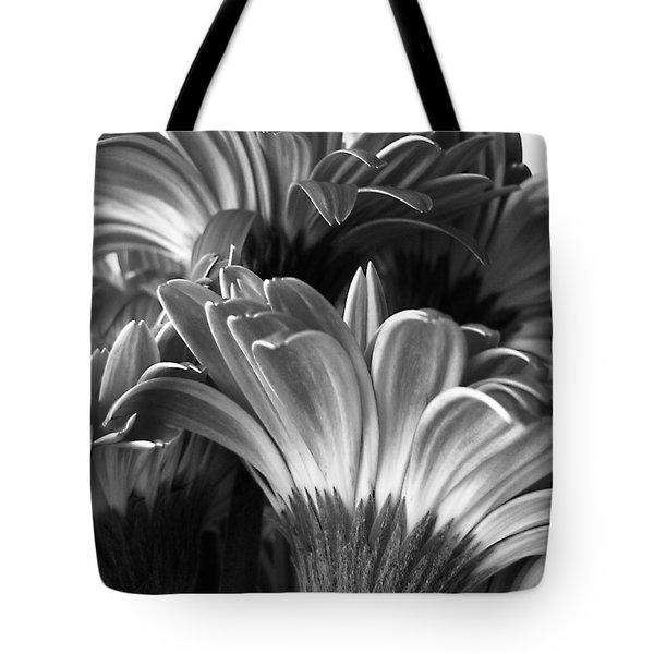 Monochrome Gerbera Daisies Square Tote Bag