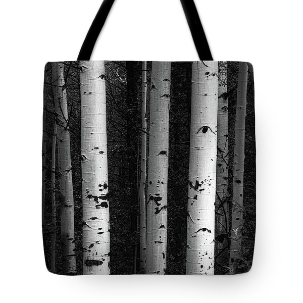 Tote Bag featuring the photograph Monochrome Wilderness Wonders by James BO Insogna