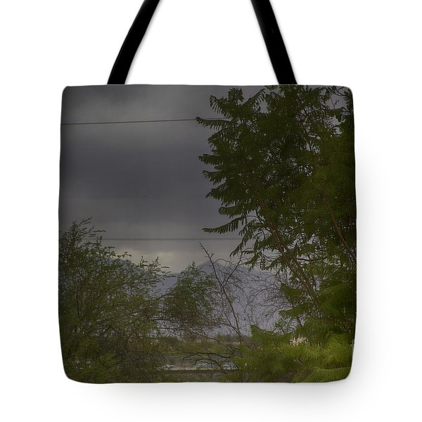 Tote Bag featuring the photograph Monsoon Season by Anne Rodkin