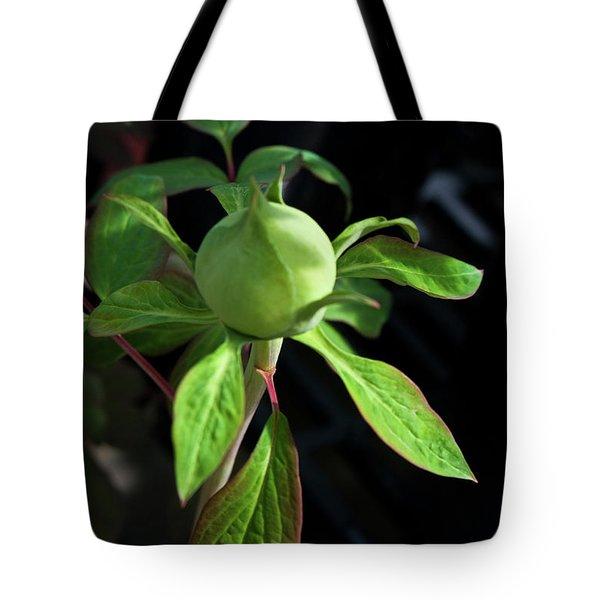 Monstrous Plant Bud Tote Bag by Douglas Barnett