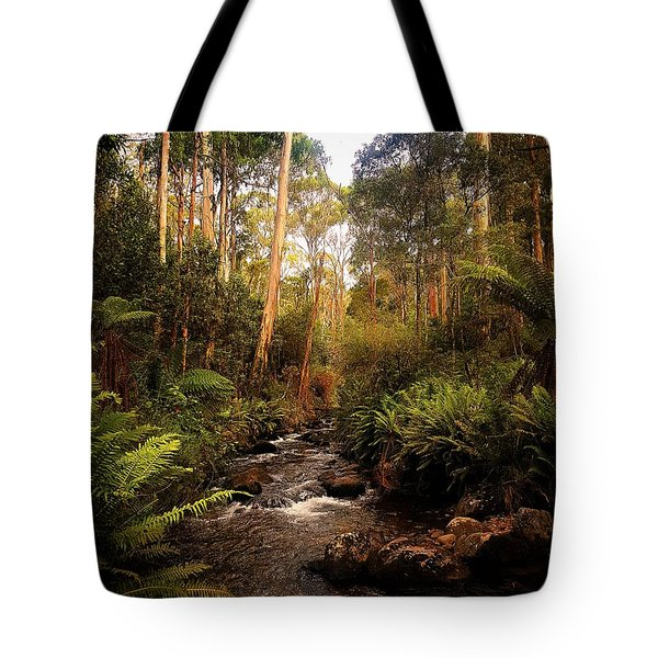 Montain Creek  Tote Bag