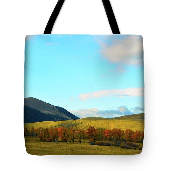 Montana Fall Trees Tote Bag