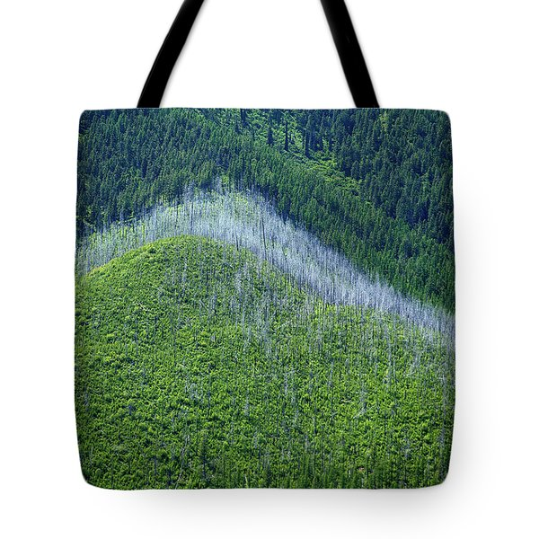 Montana Mountain Vista #4 Tote Bag