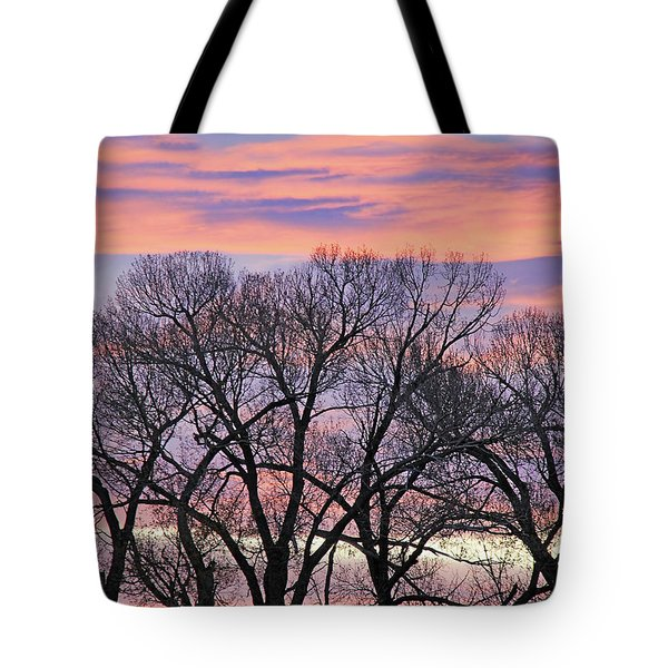 Tote Bag featuring the photograph Montana Sunrise Tree Silhouette by Jennie Marie Schell