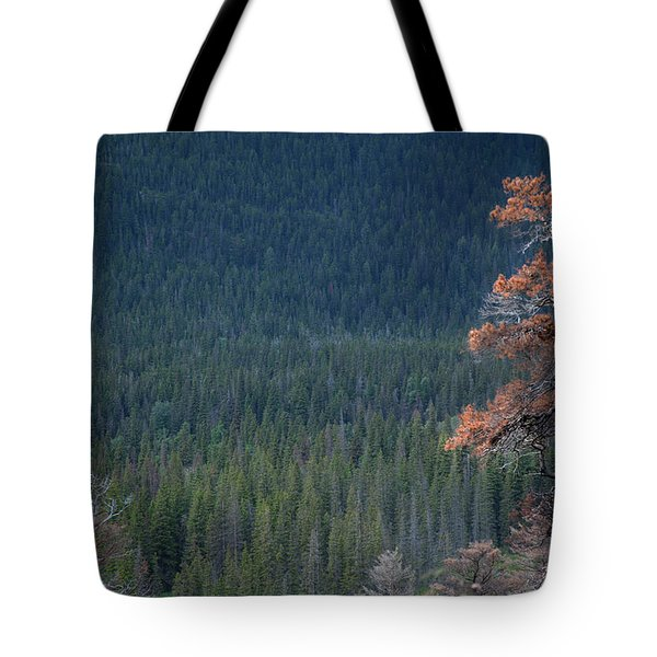 Montana Tree Line Tote Bag