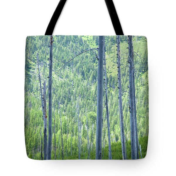 Montana Trees Tote Bag