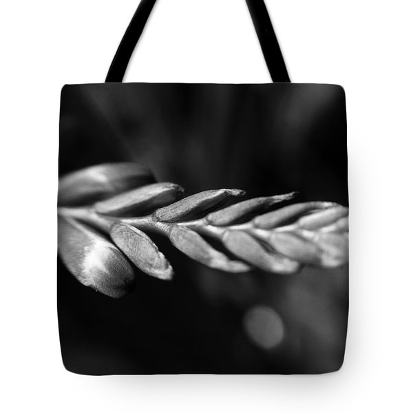 Tote Bag featuring the photograph Montbretia  by Keith Elliott