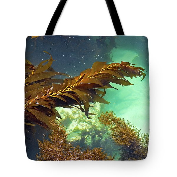 Tote Bag featuring the photograph Monterey Bay Seaweed by Susan Wiedmann