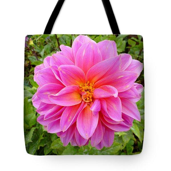 Monterey Pink Tote Bag