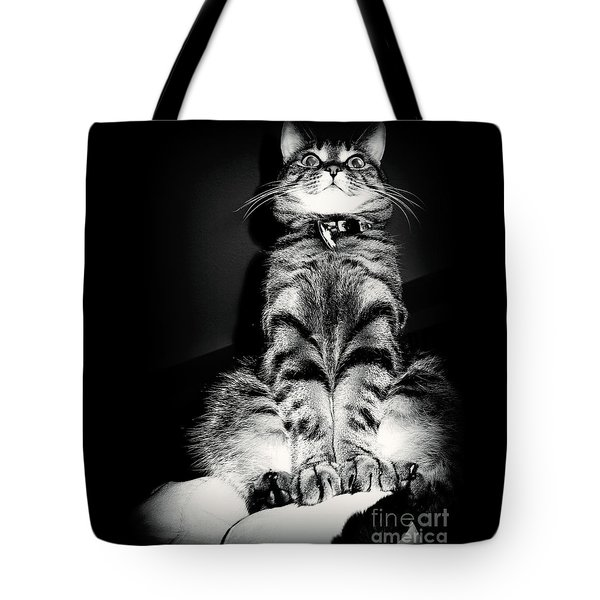 Monty Our Precious Cat Tote Bag