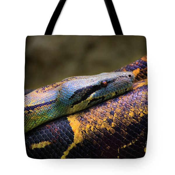 Don't Wear This Boa Tote Bag