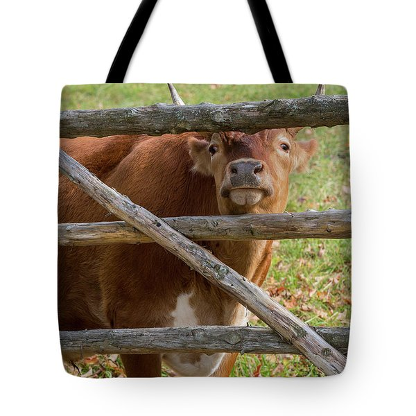 Tote Bag featuring the photograph Moo by Bill Wakeley