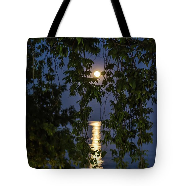 Moon Curtain Tote Bag