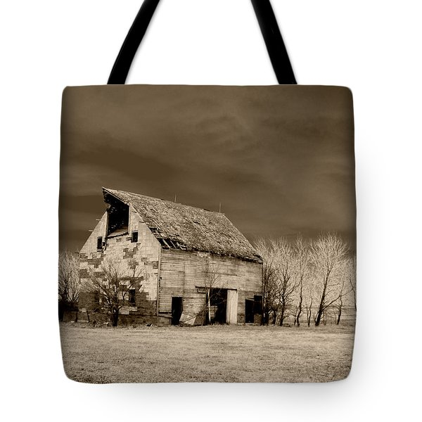 Moon Lit Sepia Tote Bag