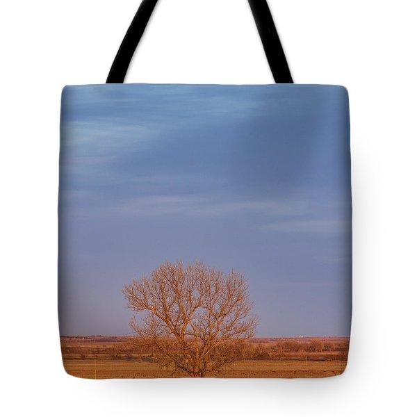 Moon Over Tree Tote Bag