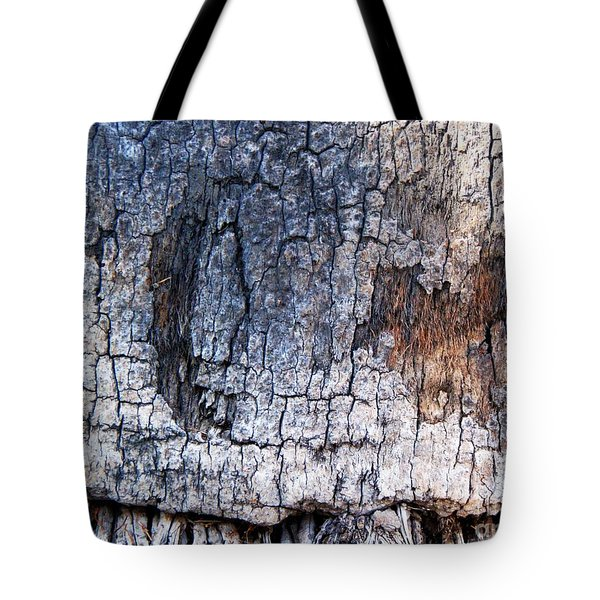 Moon Tote Bag by Vanessa Palomino