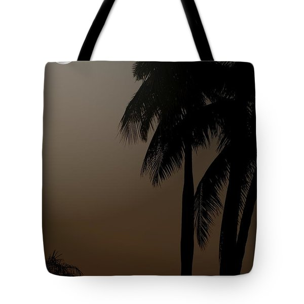 Tote Bag featuring the photograph Moonlight And Palms by Diane Merkle