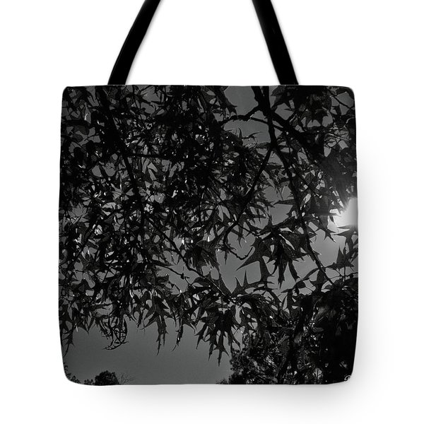Tote Bag featuring the photograph Moonlight by Betty Northcutt