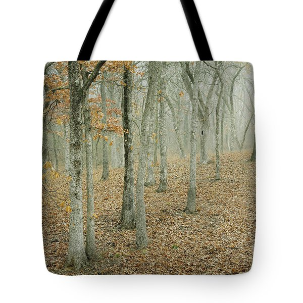 Moonlight In The Forest Tote Bag