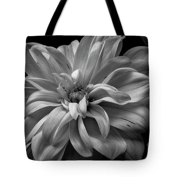 Tote Bag featuring the photograph Moonlit Dahlia by Chris Scroggins