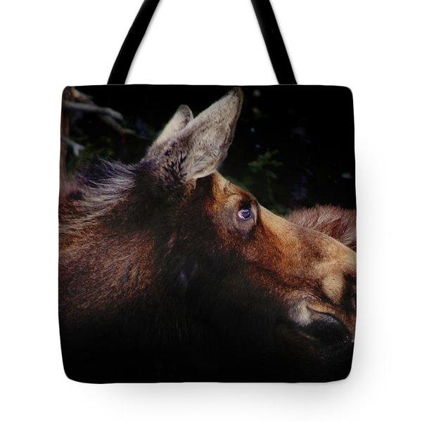 Moonlit Moose Tote Bag