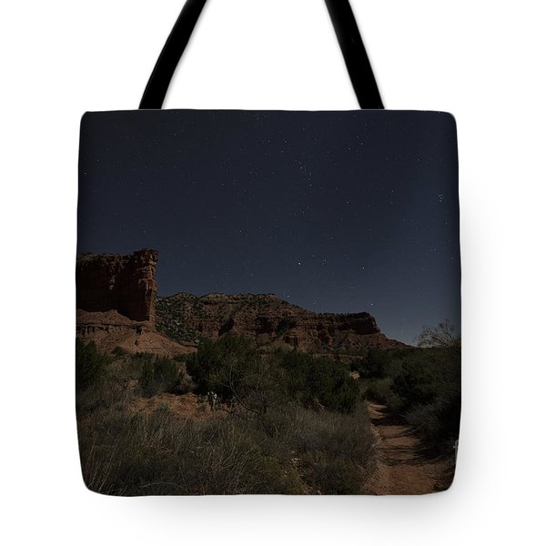Tote Bag featuring the photograph Moonlit Path by Melany Sarafis
