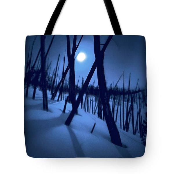 Moonshadows Tote Bag