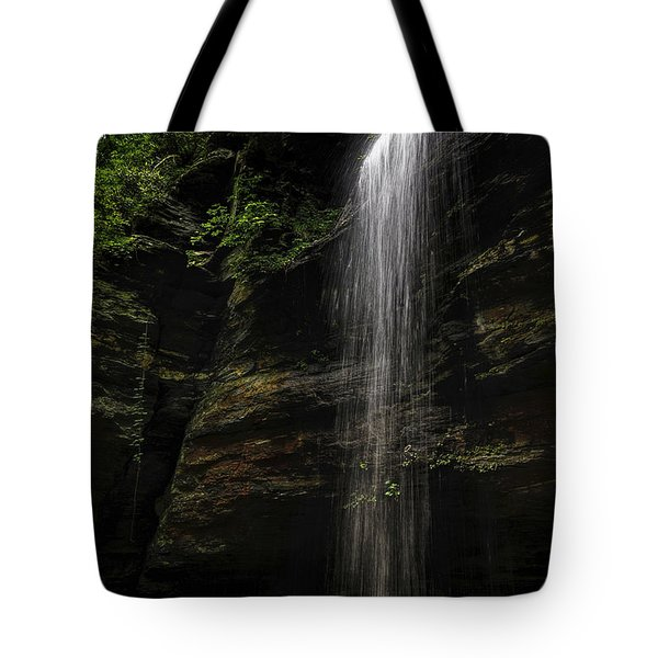 Moore Cove Falls Tote Bag