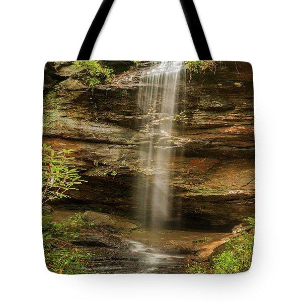 Moore Cove Falls Tote Bag