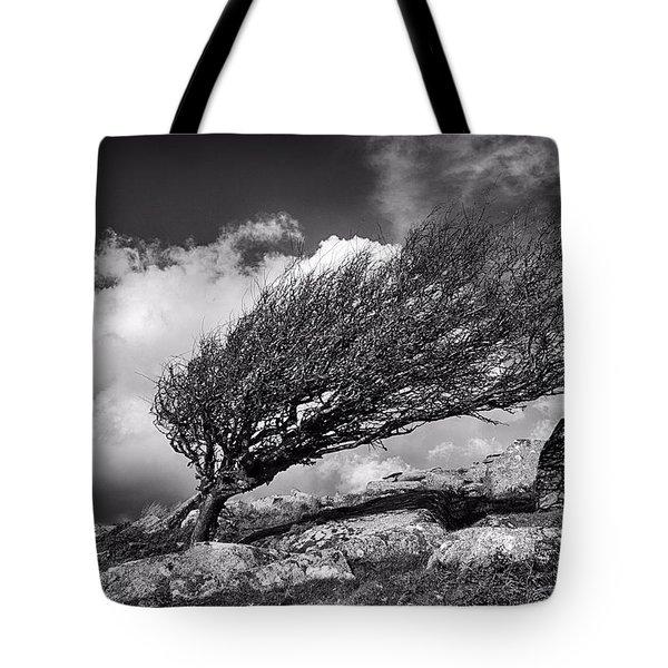 Moorland Tree Tote Bag