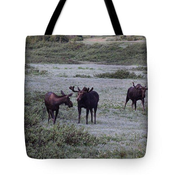 Moose Cameron Pass Co Tote Bag