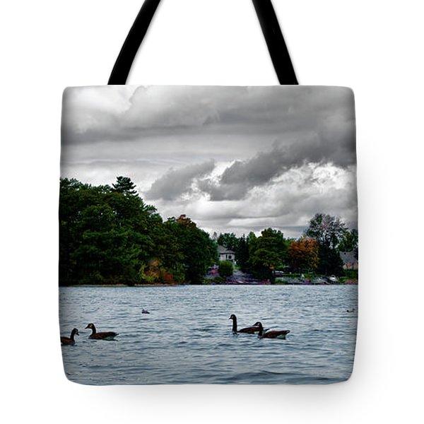 Moose Beach Point Tote Bag