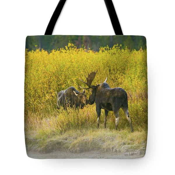 Tote Bag featuring the photograph Moose Couple by Wesley Aston
