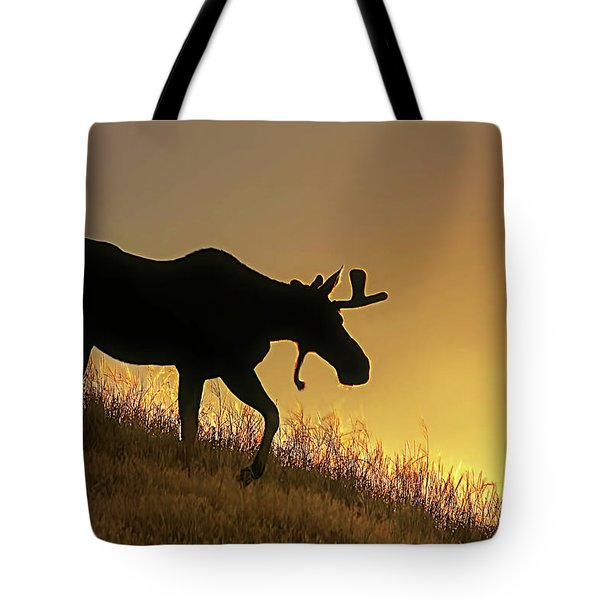 Tote Bag featuring the photograph Moose Evening Wander by Jennie Marie Schell