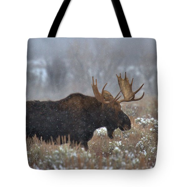 Tote Bag featuring the photograph Moose In The Fog by Adam Jewell