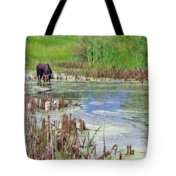 Moose In The Marsh Tote Bag by Matt Helm