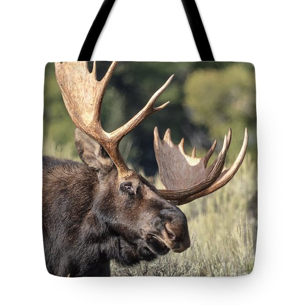Tote Bag featuring the photograph Moose by John Gilbert