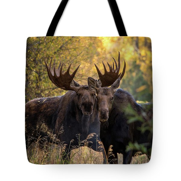 Tote Bag featuring the photograph Moose Love by Mary Hone